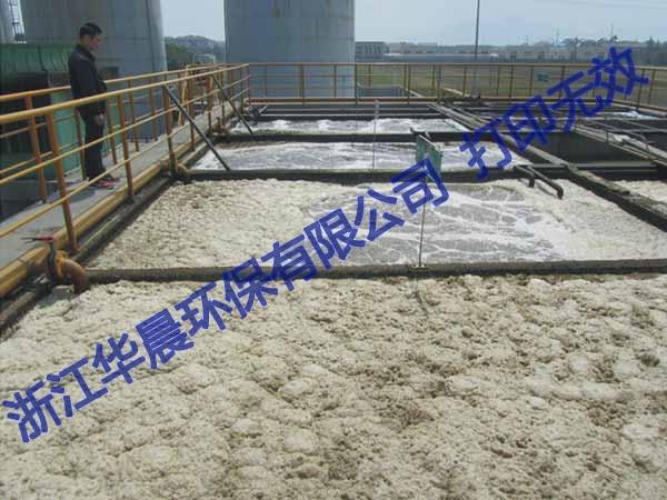 天津皮革污水处理器